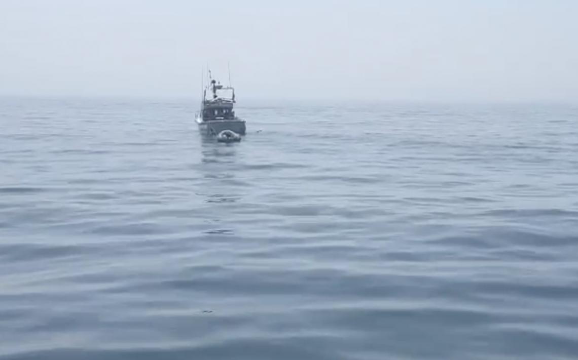 Getting closer to Sea Leopard